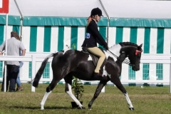 Willow Tarrant riding Lostock Black Velvet