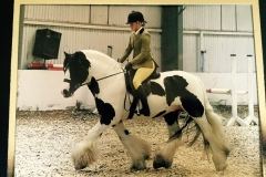 Willow Tarrant riding SD Classic Edition