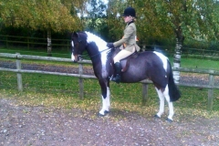 Willow Tarrant riding Shybont Fame Game