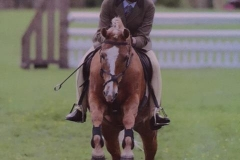 Cennen Speculator and Polly Muirhead