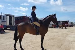 Emma Dewhurst Horse:Pony Parkgate Royal Visit William