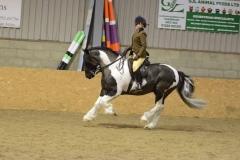 nantllesg elwyn rider Roanna Hamilton