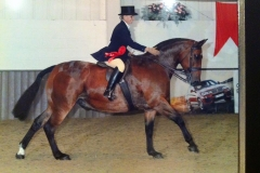 I'm a star ridden & annette Hance