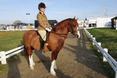 Cwmythan Easter Express Rider Vicki Myronidis