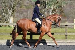 Huntroyd aurora Rider Anna Naomi