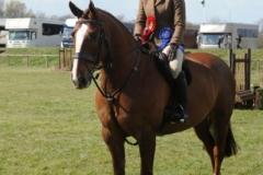 Olivia Hammond and Noble Sir Lancelot