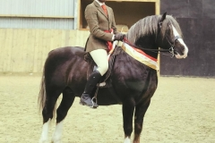 Renvarg Robin Hood and Richard Clough