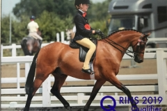Emma Harker and Ardenhall Blenheim