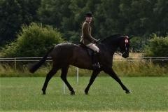 Peter Hodgkinson Horse:Pony Raconteur
