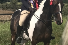 Victoria Brooks Horse:Pony Tarnbrook Take It All