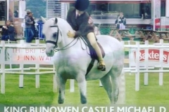 Tess-Lowe-and-King-Bunowen-Castle-Michael-D