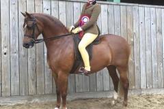 Tori Thomas riding Northlight Coppellia