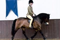 Poppy Fisher riding Mary Rose Bryant Exmoorn - Moonpenny Aquarius