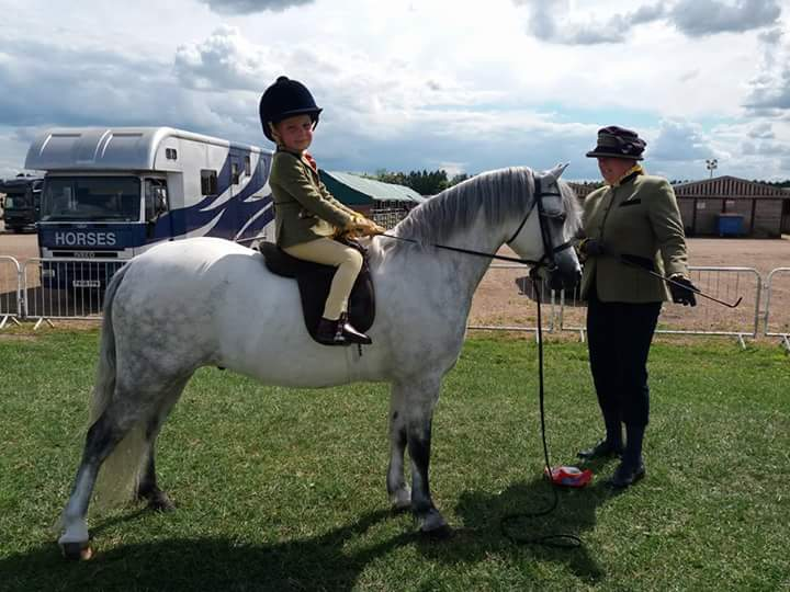 Aston Potter-firth Horse:Pony Heniarth yes sir