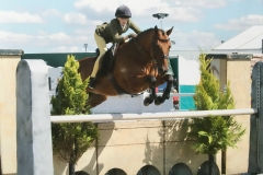Susie Eddis Horse:Pony Noble Sir Prize