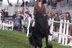 Hayley Reynolds Horse:Pony Bracklinn Jackpot