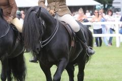 iysha pitman Horse:Pony Bybeck Kasper