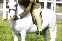 Hannah Horton Horse:Pony Caerhosyn Ennillwr