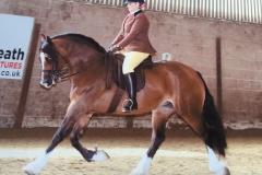 Rachel Surman-Bright Horse:Pony Morry Imari