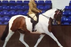 Rhyfel Saxon prince and Danni Radford