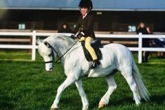 Noah Roney -Billard and Polaris unicorn