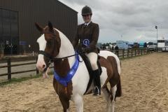 Emma Croft Horse:Pony Colourful Life