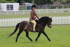 Davinia-johnson-and-Stowbrook-Red-Kite