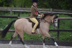 Tori Thomas riding Jenny Halls Griashall Lara