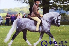Victoria Harker and Dukshill Pearly Spencer