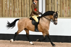 Emily-Carroll-and-Avonvalley-Flash-Harry