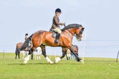 Dannii-Thexton-and-Llandderfel-Prince-Richard
