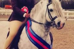 Wintersend Nimbus Rider Abby Louise Marshall