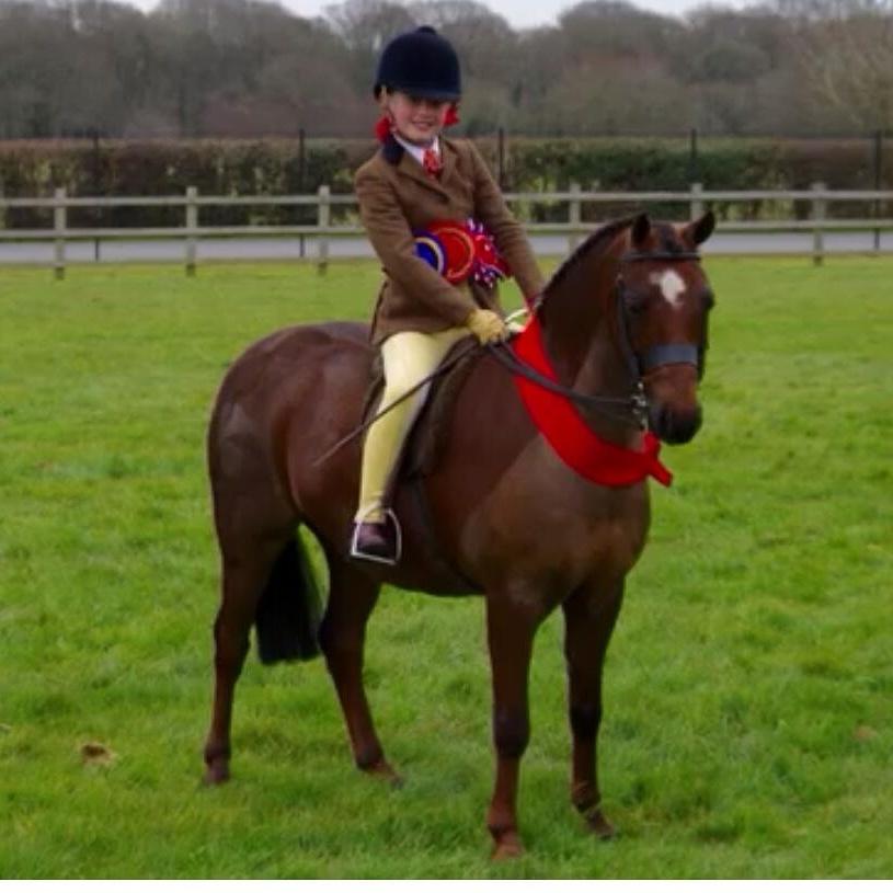 Newoak Dreamaker rider Tori Dymond