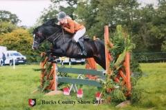 Ellis Priestley Horse:Pony Tysgubor Owain