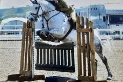 Rebecca-Hoyle-Horse-Pony-Cavan-lady
