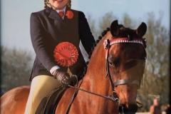 Chloe Heathcote riding Barkway moonfairy
