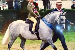 Georgie Grace riding Priestwood Roc Star