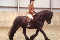 Severnvale George rider Molly Kushner