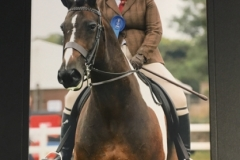 Karabel Holman- Luck and Shear Impulse