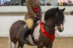 Lucie Gordon-Burgess Horse:Pony Burghwallis Razzmatazz